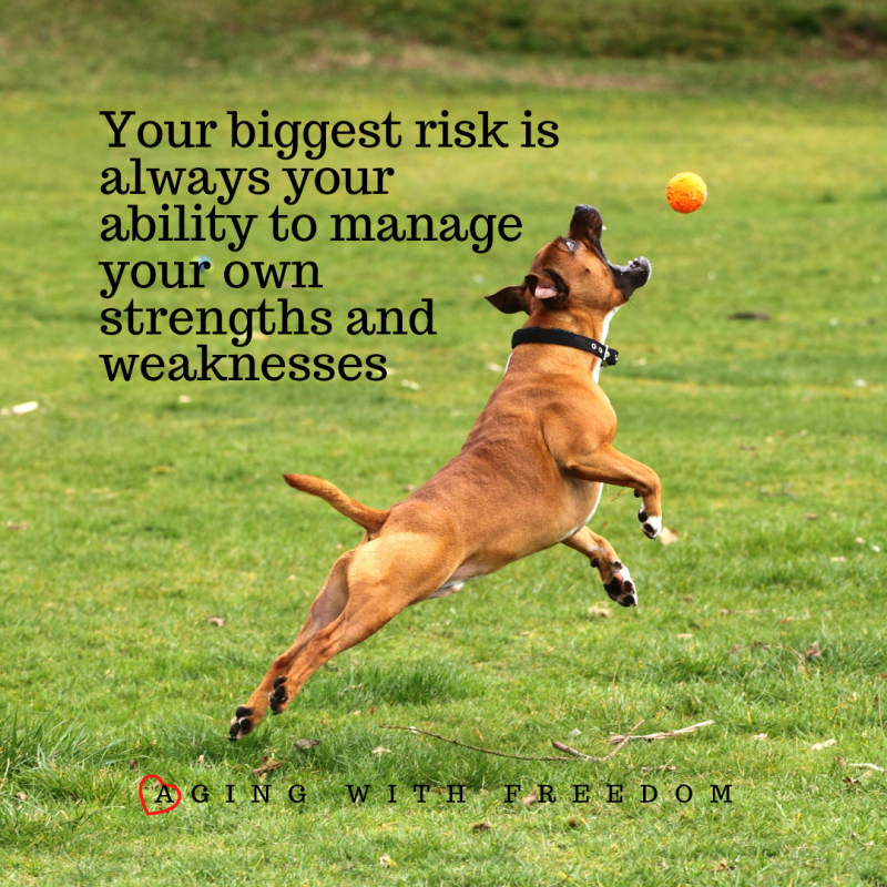 Your biggest risk is always your ability to manage your own strengths and weaknesses. Aging With Freedom. Dog catching ball