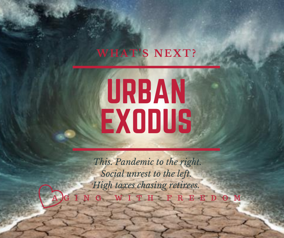 Biblical Exodus referenced with a dry path between towering waves to the left and the right. Pandemic to the right, social unrest to the left, high taxes chasing retirees. They flee Goshen down the open path to the promised land.